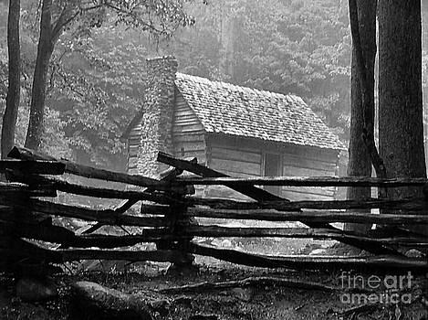 Cabin in the Fog by Julie Dant