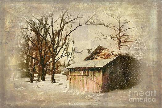 Dan Carmichael - Cabin in Winter Snow