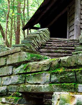 Cabin Staircase - Buttermilk Falls by John Baumgartner