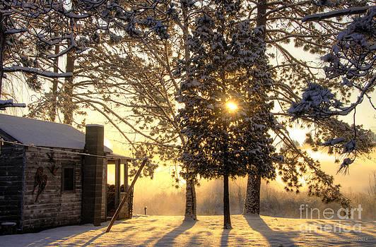 Marianne Kuzimski - Cabin Sunrise