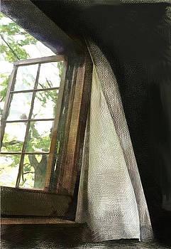 Cabin Window by Barbara Milton