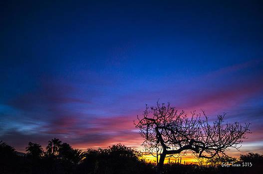 Cabo sunrise 1 by Galo Teran