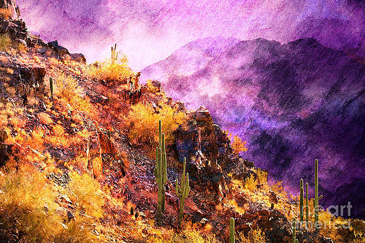 Cacti on Fire Mountain by Jeanette Brown
