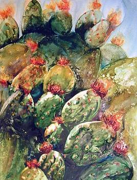 Cactus by Donna MacLure