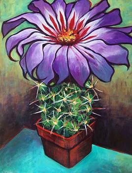 Cactus Flower by Susan Santiago