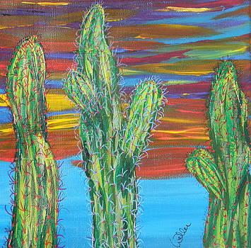 Marcia Weller - Cactus of Color 16