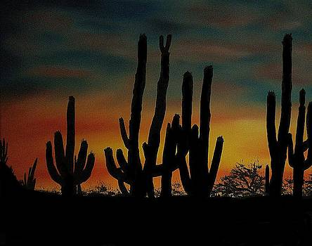 Cactus Sunset by Aaron Thomas