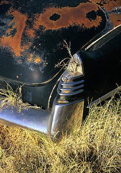 Caddy Tail Fin by Martin Sullivan