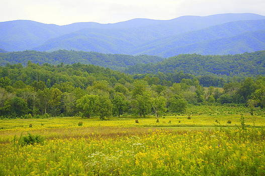 Laurie Perry - Cades Cove