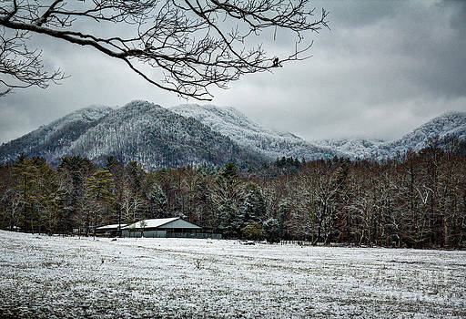 Cades Cove Snow by Douglas Stucky