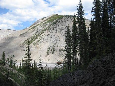 Melanie Spencer - Cadomin Alberta Mountain Range