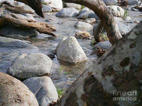 California Canyon 22 by Drew Shourd