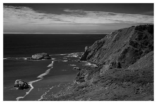 California Coast by Eugene Dailey