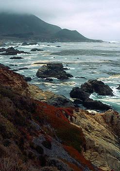 Kathy Yates - California Coast