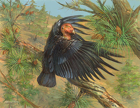 California Condor by ACE Coinage painting by Michael Rothman