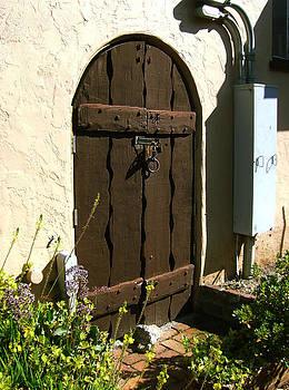 Xueling Zou - California Door Collection 1