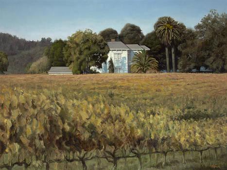 California Vineyard Estate by Terry Guyer