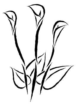 Calla Lilies by Mark Teeter