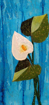 Calla by Maureen Wartski