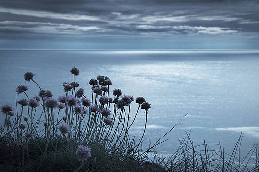Calm Blue Sea by Dorit Fuhg