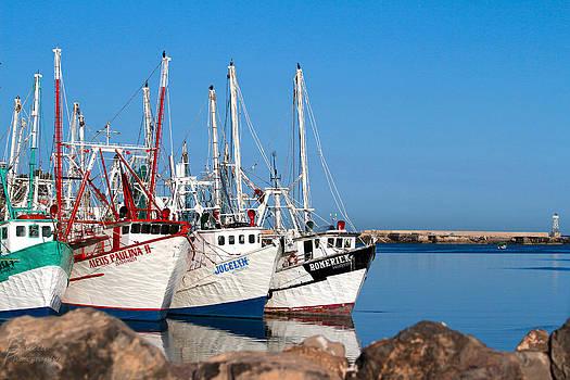 Calm Harbor by Robert Bascelli