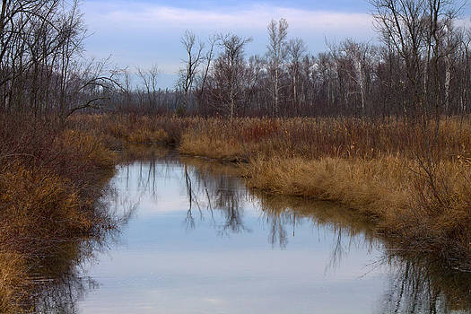 Calm Reflections by Rhonda Humphreys