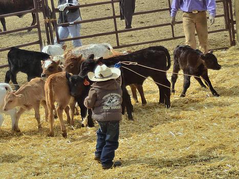Kae Cheatham - Calves and Little Cowboy