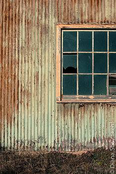 Cambria Barn by Diana Shay Diehl