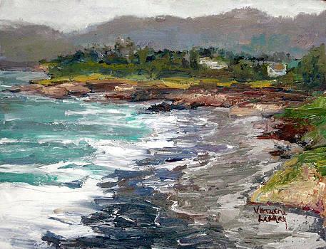 Cambria Coast  by Nancy LaMay