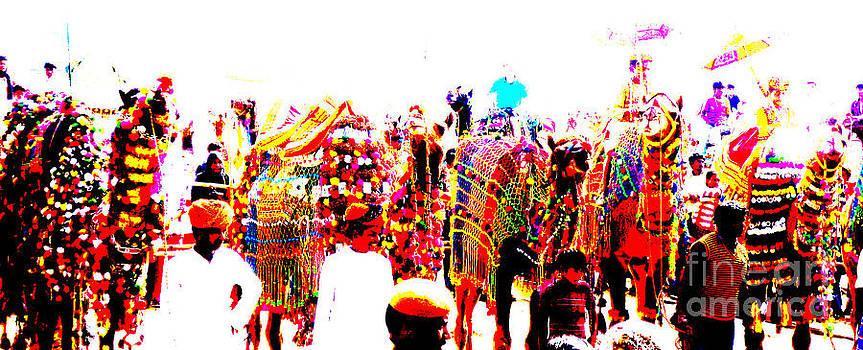 Camel fair  by Dhiraj Parashar