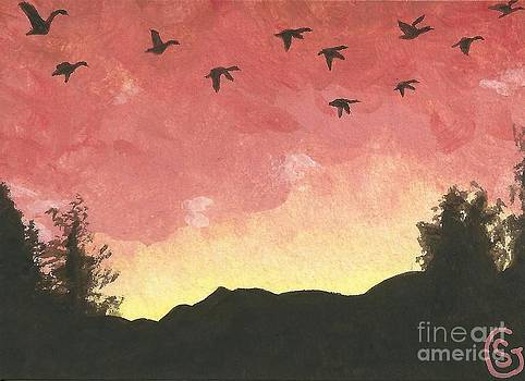 Canada Geese -- Looking for Lodging for the Night by Sherry Goeben