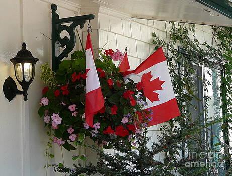 Canadian Patriotism by Avis  Noelle