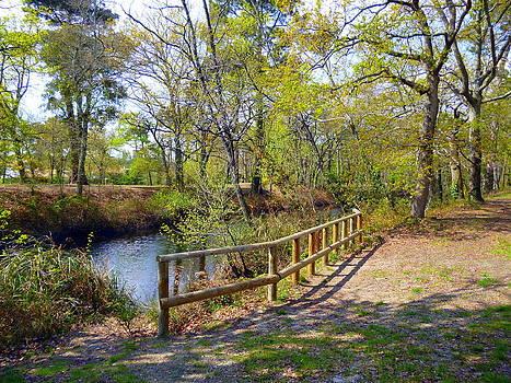 Bishopston Fine Art - Canal Path