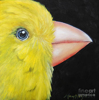 Canary Face by Mary Hughes