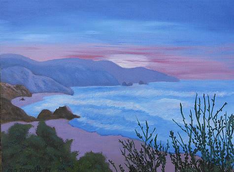 Cannon Beach - OR by Dorothy Merritt