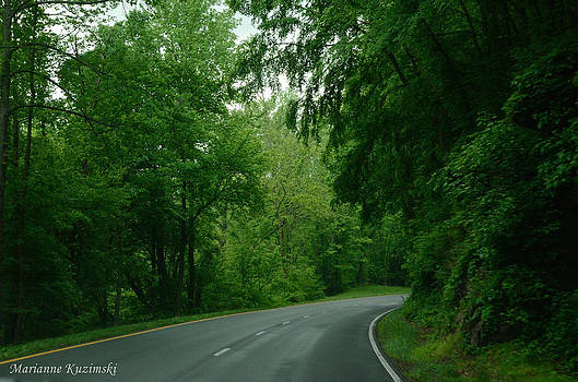 Marianne Kuzimski - Canopy Road