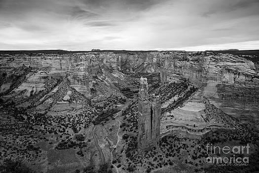David Gordon - Canyon de Chelly III BW