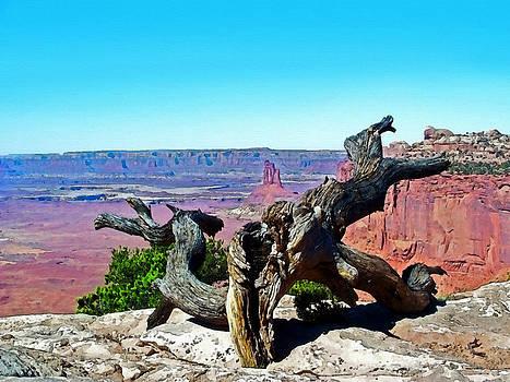 Canyon Lands National Park by Susan Leggett
