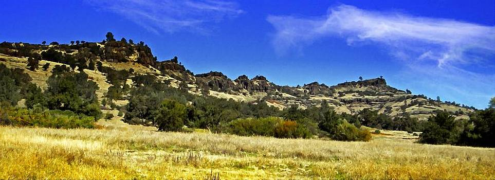 Frank Wilson - Canyon Panorama