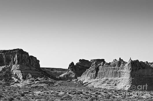 Dave Gordon - Canyon Point Utah II