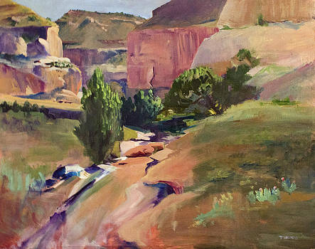 Canyon Wash by Tyler Willmore