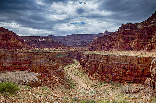 Canyonlands by Juergen Klust