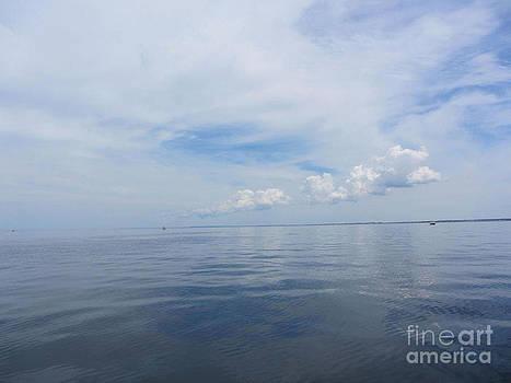 Cape Cod Bay by Lisa  Marie Germaine