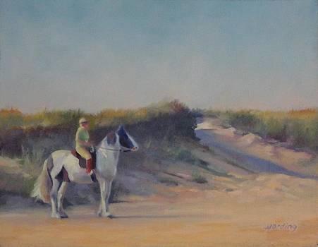 Cape Cod Beach Rider by JT Harding