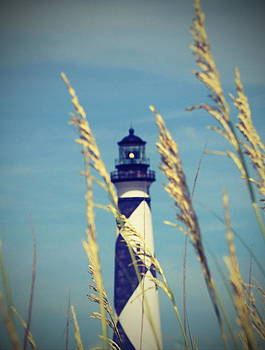 Cape Lookout Light and Sea Oats 10 by Cathy Lindsey