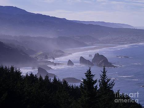 Cape Sebastian by Tracy Knauer