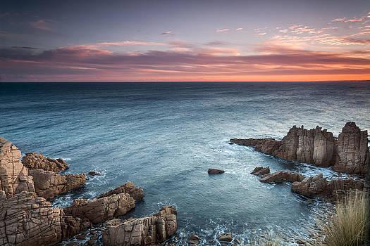 Cape Woolamai by Shari Mattox
