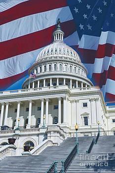 David  Zanzinger - Capital Dome American Flag  Washington DC