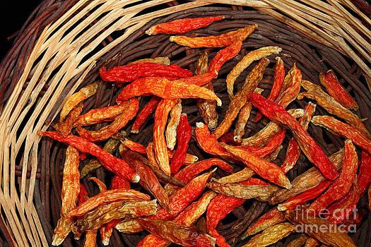 James Brunker - Capsicum annuum Chilis in Basket