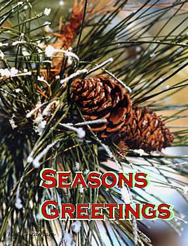 Kae Cheatham - Card for the Winter